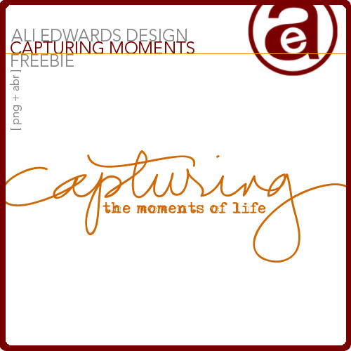 AE_CapturingMomentsFreebie_PREV