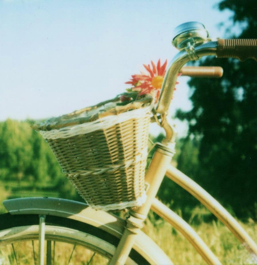 Pola-bike