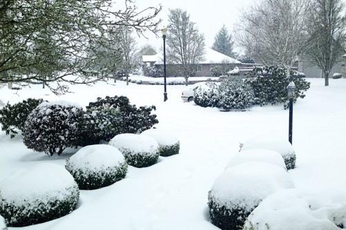 ae-snow