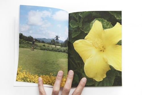 AE-golfflower