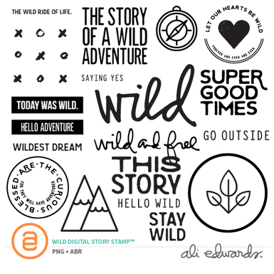 Ae wilddigitalstorystamp prev